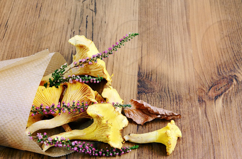 paper bag with golden chanterelle and erica flower photo