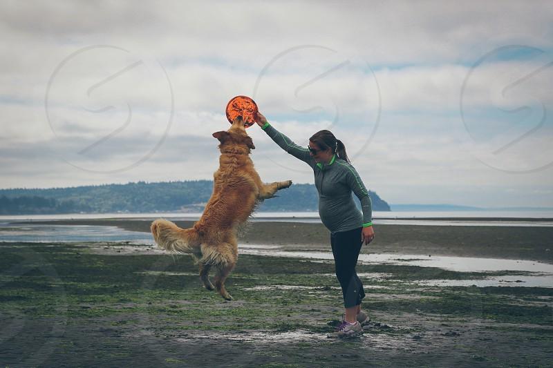 Frisbee on the beach... photo