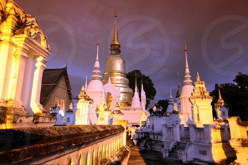 the Wat Suan Dok Tempel in the city of chiang mai in the north of Thailand in Southeastasia. 