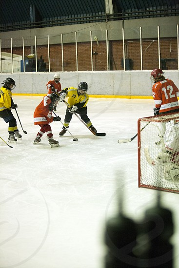 Ice hockey photo