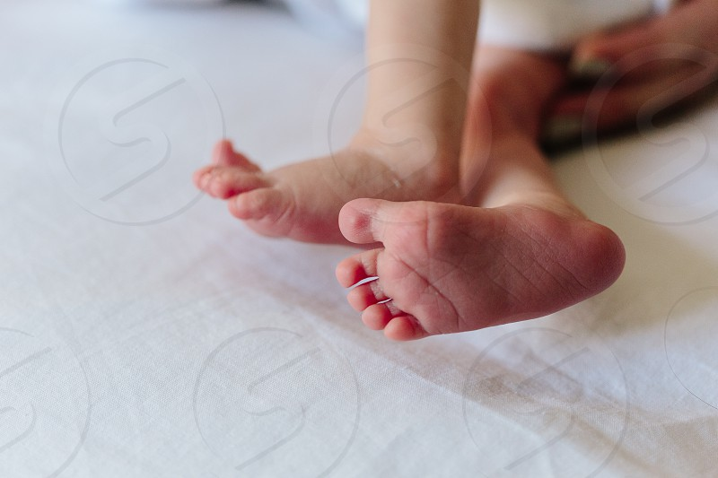 baby feet toes baby feet little baba infant newborn cute sweet love wake up lifestyle family child photo