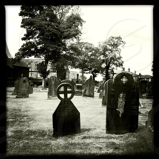 Graves graveyard black and white spooky gothic Halloween horror photo