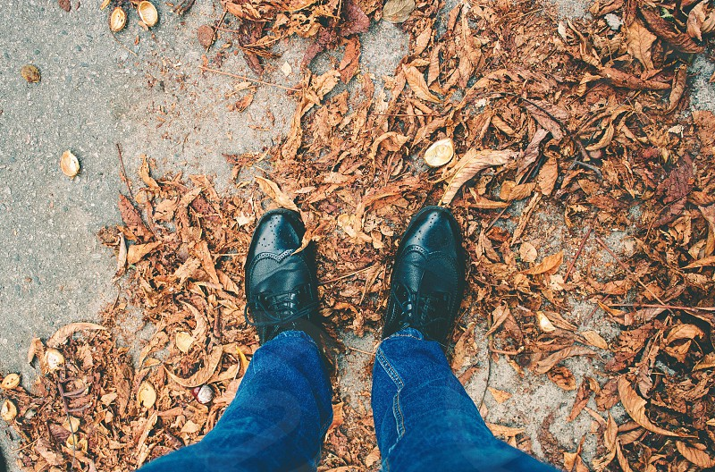 Awesome autumn leafs leaves golden style city street fall men fashion fashion photography men style mensfashion look shoes jeans stylish sharp photography photographer professional photographer fashion look mood vibes photo