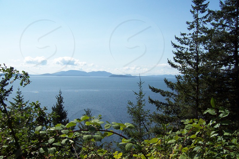 Chuckanut Drive WA photo