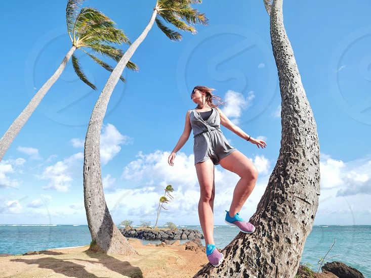 Walking on palm trees on the beach in tropical summer Hawaii time photo