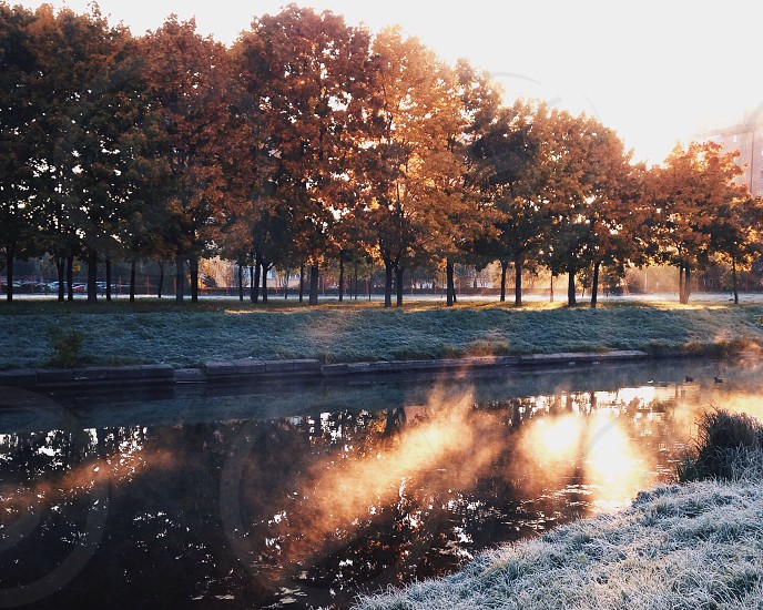 calm water river surrounded by frost covered grass and autumn leaf trees with the sun in the distance photo