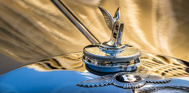 Classic Car Bentley wings gold photo