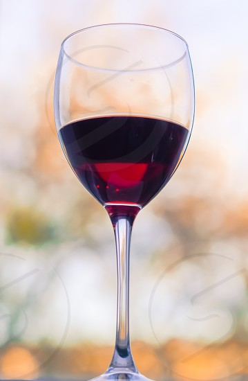 glass with red wine on blured background photo
