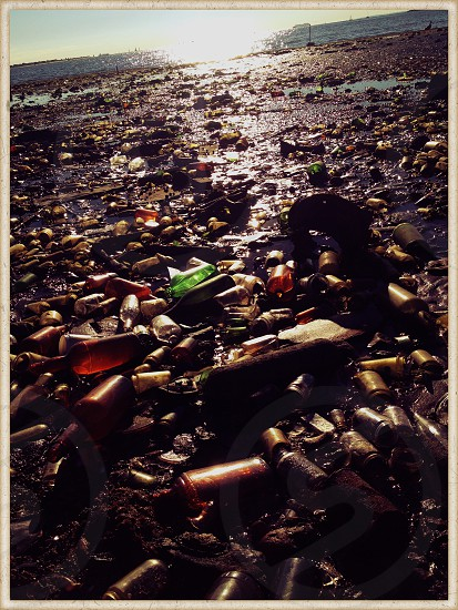 Vintage bottles from an old Brooklyn landfill by the bay.  Dead Horse Bay Brooklyn NYC photo
