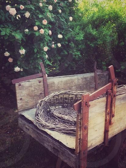 Cart basket wicker rose rustic romantic wagon photo