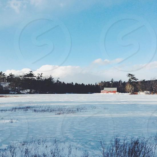 Frozen. photo