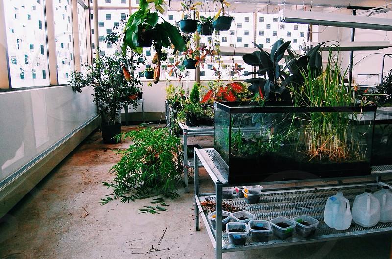 Green Room @ RVC photo