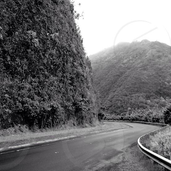 Road to Hana  photo