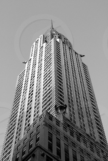 black and white new york crystler building photo