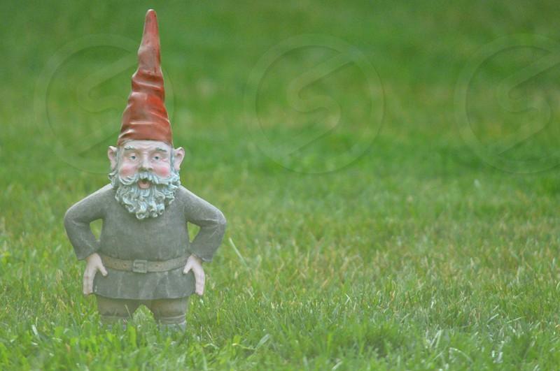gray and red concrete garden gnome statue photo