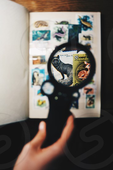 person holding black round magnifying glass photo