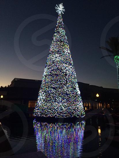 Scottsdale holiday season  photo