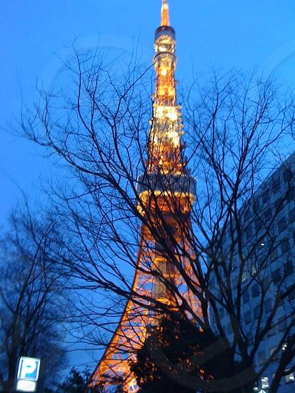 Tokyo  tower at night photo