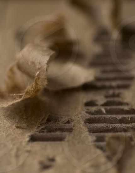 brown cardboard paper photo