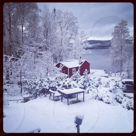 Swedish countryside winterland photo