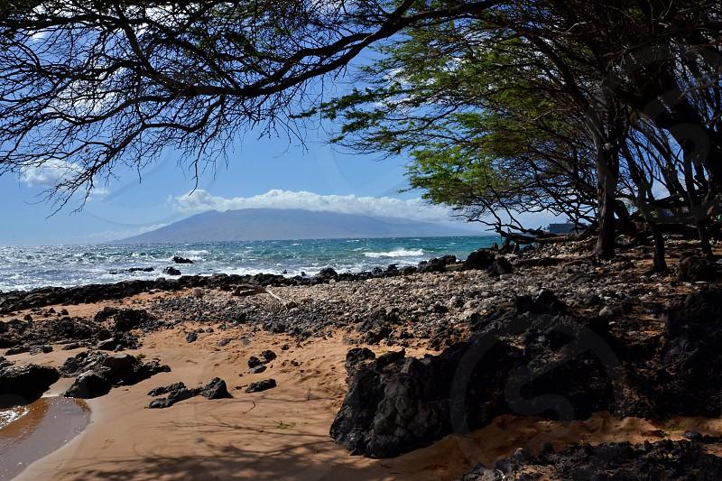 Maui Hawaii - beautiful beach photo