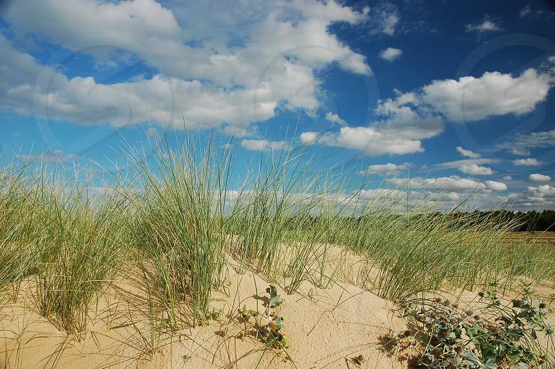 beach blue britain british cloud coast coastal dune england grass green holiday horizon kingdom landscape nature norfolk north sand scenery scenic sea seaside sky tourism uk united photo
