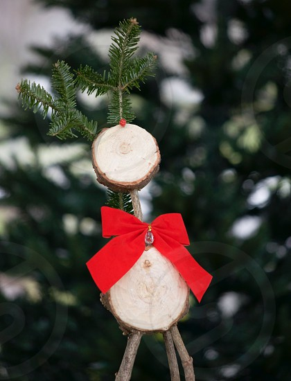 white and brown wood decor with red ribbon and pine leaf in selective focus photo