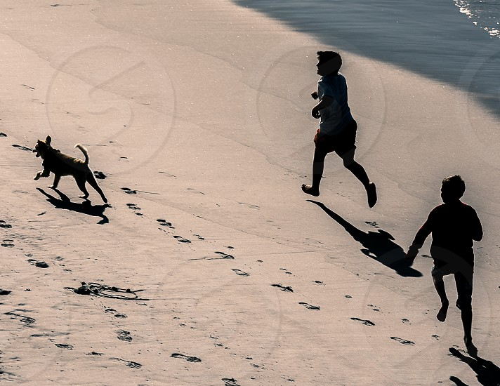 silhouette ocean kids play playing beach dog california photo