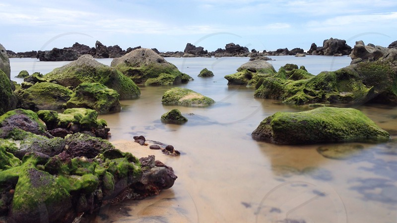 green and black stones in water photo