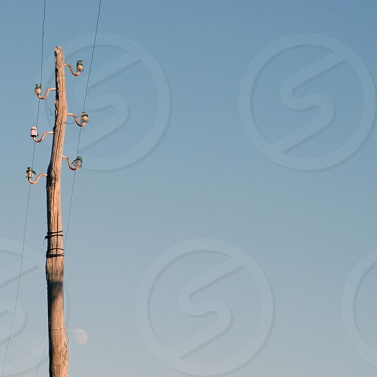 brown wooden utility pole photo