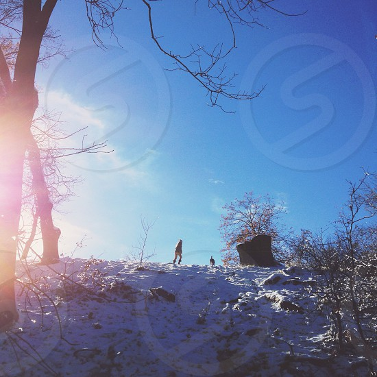 person walking on snow cover mountain photo