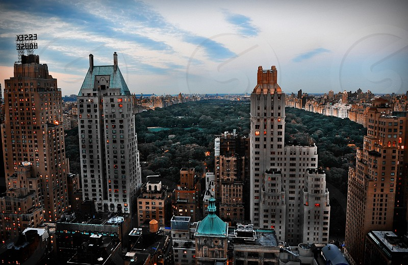 looking north over Central Prk photo