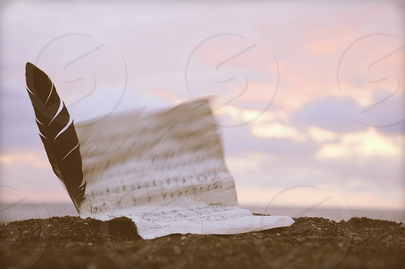 sheet music paper with a feather sticking in a dirt mound under a cloudy sky photo