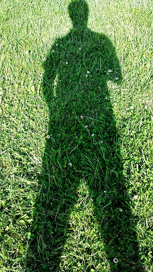 Hulk! #Green #Shadow #Grass #Outdoor photo
