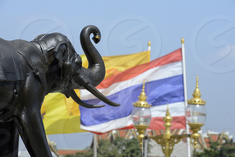 a elephant monument and a thai flag at the Wat Arun at the Mae Nam Chao Phraya River in the city of Bangkok in Thailand in Southeastasia. photo