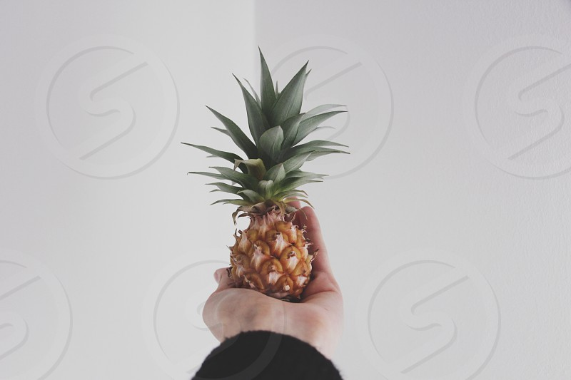 orange pineapple fruit photo