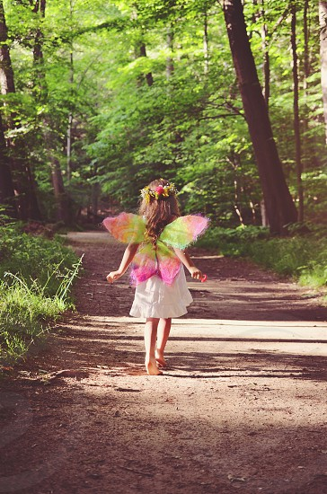 summer forest fairy wings colorful magical whimsy girl children art light photo
