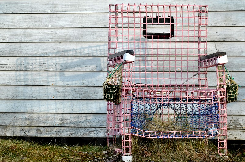 """""""recycled"""" lobster trap. photo"""