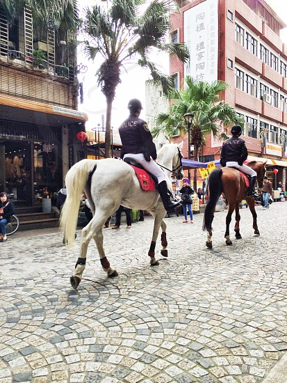 two police officer riding horses photo
