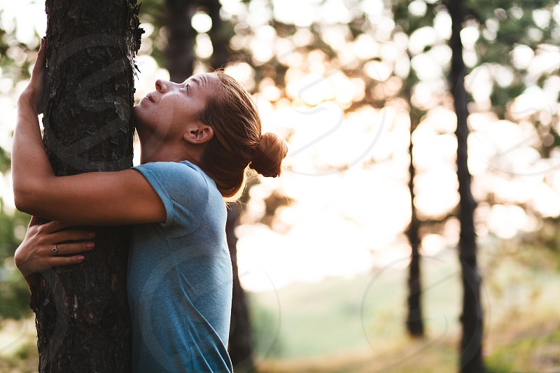 Young woman hugging tree in the forest photo