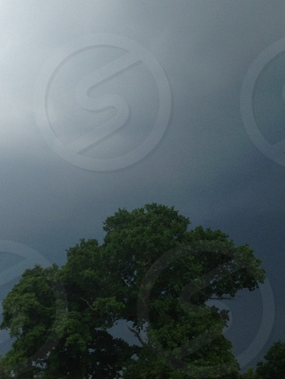 Storm clouds treetop dark skies photo