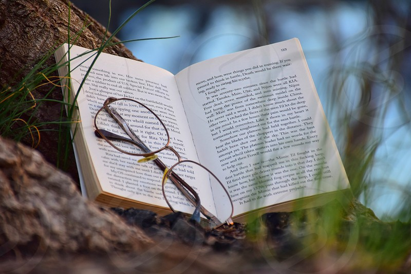 brown frame eyeglasses on top of wide opened book near tree branch photo