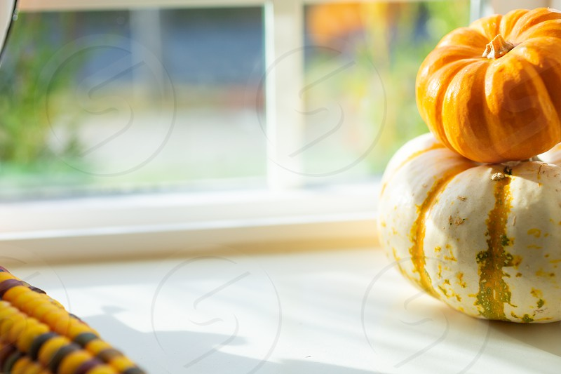 A background image of miniature autumn decorations on a window sill featuring Indian corn and stacked pumpkins. photo