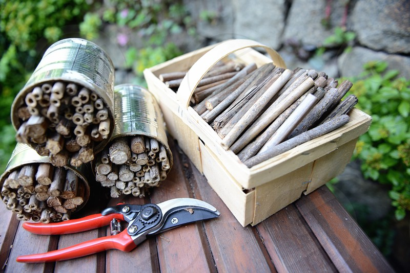 utensils to build an insect shelter for wild bees and wasps. photo