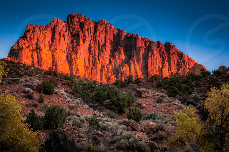 Glowing Rockface at Sunset in Zion National Park photo