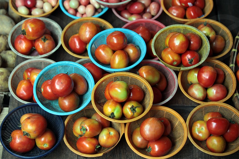 tomatos at the foodmarket at the Morningmarket in Nonthaburi north of the city of Bangkok in Thailand in Suedostasien. photo