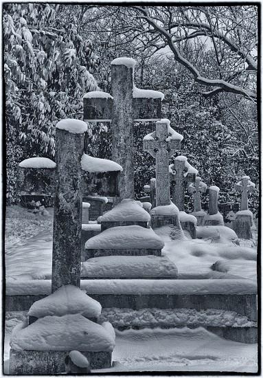 Snowy graveyard photo