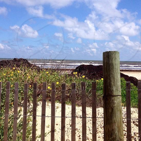 Beach serenity photo
