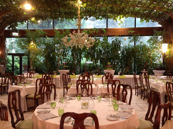Green glass foliage restaurant dining tables chairs linen plants chandelier glasses photo