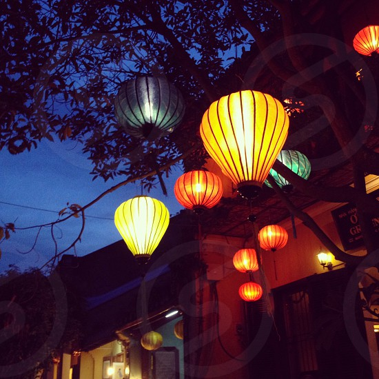 yellow lamps hanging on the tree photo